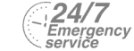24/7 Emergency Service Pest Control in Hanwell, W7. Call Now! 020 8166 9746